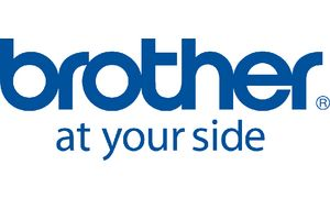 WT-100CL - Brother Waste Box 20.000vel