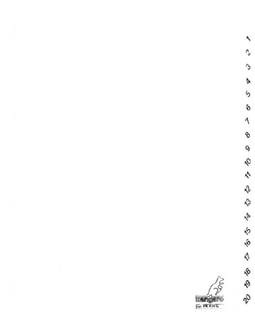 PK420C - KANGARO Tabbladen 4-Gaats 1 tot 20 190gr Wit 1-Set A4