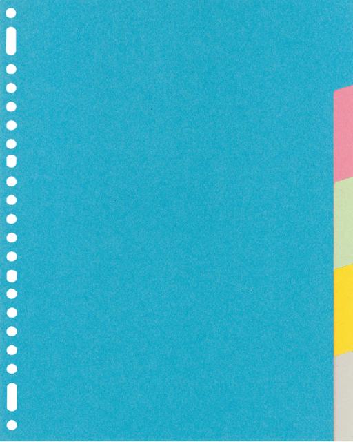 RY405M - KANGARO Tabbladen 23-Gaats 5-Delig 220gr Diverse Kleuren 1-Set A4